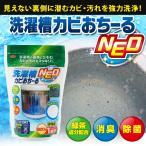 洗濯槽洗浄剤 カビ落とし 洗剤 粉末タイプ 除菌消臭 1回分600g