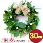 クリスマスリース 玄関 おしゃれ『香るグリーンフレッシュリース・生』30cm┃ フレッシュ 生花 ギフト