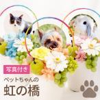 虹の橋-プリザ┃-送料無料 プリザーブドフラワー 仏花 ペット お供え 供養花