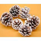 クリスマスリース 手作り クリスマスリース 玄関 おしゃれ 材料 花材・自然 松かさ雪5個 セット