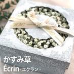 かすみ草 花束 『Ecrin-エクラン』 生花 アレンジ 花