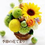 敬老の日 花 ギフト『花てまりS』生花 送料無料 季節の花  花 プレゼント 2019