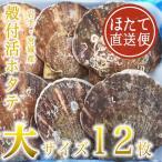 殻付活ホタテ 岩手・宮城産 大サイズ 13cm 12枚