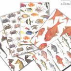 cicada 和紙はがき ばら売り 海シリーズ 魚 ポストカード 金目鯛 タツノオトシゴ 熱帯魚 伊豆