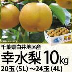 千葉県白井地区産 幸水梨10kg 5L/20玉〜4L/24玉(220_20梨)