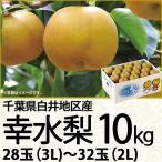 千葉県白井地区産 幸水梨10kg 3L/28玉〜2L/32玉(220_20梨)