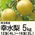 (銀行振込決済受付は終了しました)埼玉県騎西地区または白岡地区産幸水梨 幸水梨5kg 2L/16玉(220_18梨)