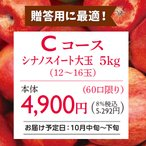 りんご 林檎(贈答用)(予約)(Cコース)長野県産シナノスイート大玉りんご5kg(10月中旬〜下旬出荷)