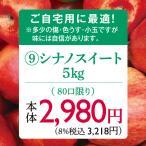 りんご 林檎(お自宅用)(予約)(Hコース)長野県産シナノスイートりんご5kg(10月中旬〜下旬出荷)