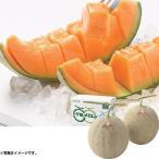 お中元 御中元 ギフト 果物 フルーツ 北海道産 夕張メロンMサイズ2玉 (220_19夏)