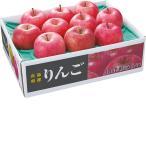 お歳暮 御歳暮 果物 青森県産 蜜入りサンふじりんご約2.5kg(9〜12玉) (220_19冬)