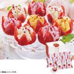 (銀行振込決済受付は終了しました)お中元 ギフト アイス 花いちごのバラエティアイス(博多あまおう) A-DR(240_20夏)