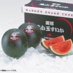 お中元 ギフト 果物 北海道産JAふらの 黒小玉すいか (220_20夏)