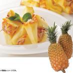 お中元 ギフト 果物 沖縄県産 スナックパイン (220_20夏)