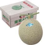 お歳暮 御歳暮 熊本県産 アールスメロン(青肉)1玉(約1.3kg) (220_20冬)