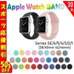 【スポーツ応援割引中】Apple Watch バンド series SE 6 5 4 3 2 1 ベルト スポーツ 44-42- 40-38mm アップルウォッチ バンド アップル アップル部品あ