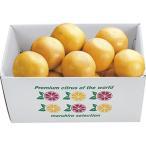 [フロリダ・インディアンリバー地区]〈Bobby's〉グレープフルーツ(ホワイト) のし・包装不可