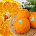 デコポン 熊本県産 高級品種 箱込 約2kg (5〜8玉 )