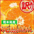 訳あり みかん 約10キロ 熊本産 完熟蜜柑  3S〜3Lサイズ
