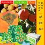 柿子 - 【次郎柿 8kg】 愛媛県・宇和島産 サイズ揃い 送料無料