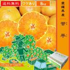 甘平(かんぺい) 8kg 愛媛県・宇和島産 ワケあり 送料無料