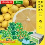 【レモン 10kg】  愛媛県・宇和島産  ご家庭用  送料無料