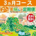 【旬が選べる 美味しさ定期便】 3カ月コース 愛媛県・宇和島