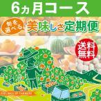 【旬が選べる 美味しさ定期便】 6カ月コース 愛媛県・宇和島