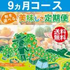 【旬が選べる 美味しさ定期便】 9カ月コース 愛媛県・宇和島