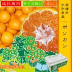 【ポンカン 4kg】 愛媛県・宇和島産 サイズ揃い 送料無料