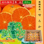 """【せとか 4.5kg×2箱】 愛媛県・宇和島産 """"秀品"""" 送料無料"""