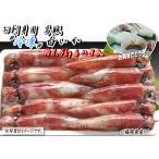 お刺身用 冷凍白いか 約1.5kg  6杯入(一本凍結) <福岡県産>
