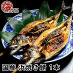 サバ 鯖 さば 焼きサバ 焼き鯖 浜焼き鯖 国産産