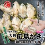 広島県産 特大 生がき 1Kg (解凍後850g)牡蠣 カキ かき 広島産 2L ギフト 2Lサイズ ジャンボ 広島かき