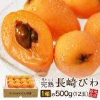 九州産 長崎びわ Lサイズ 12玉入 (500g)  1箱 長崎から産地直送 3箱以上で送料無料