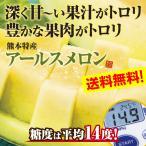 メロン アールスメロン 熊本県産 3玉セット(4.5Kg以上) 糖度14度以上