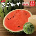 すいか スイカ 熊本県産 大玉すいか 2Lサイズ (7〜8Kg)  2玉セット すいかの名産地 熊本から産直 2玉以上で送料無料