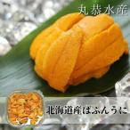 うに ウニ 北海道産 バフンウニ 塩水うに 無添加 200g(100g×2)