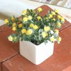 光触媒 人工観葉植物 造花 インテリアグリーン【キューブポット デイジーYE】 ※定形外可400円
