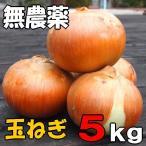 無農薬栽培 たまねぎ 5kg 北海道産 知床産玉ねぎ 送料無料