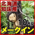 北海道産越冬じゃがいも!【メークイン10kg】知床...