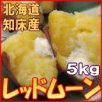 越冬じゃがいも レッドムーン 5kg 北海道産 ジャガイモ 産地直送 送料無料