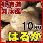 北海道産 新じゃがいも はるか 10kg ジャガイモ 産地直送 送料無料