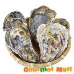 カキえもん[2Lサイズ]30個セット 北海道産 牡蠣 カキ 殻付き 生食 父の日 ギフト 送料無料