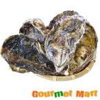 弁天かき[3L(A5)サイズ]30個セット 北海道産 牡蠣 カキ 殻付き 生食 母の日 ギフト 送料無料