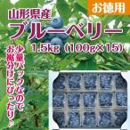 ブルーベリー 送料無料 山形県産 お徳用1.5kg (100g×15P)