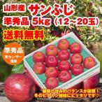 送料無料 山形県産「サンふじりんご」5kg(12-20玉)