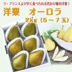 【限定50箱】 ギフト 洋梨 送料無料 山形県産 西洋梨 オーロラ 2kg (5-8玉)