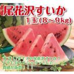 【セール】ギフト すいか 送料無料 山形県産 尾花沢すいか 8-9kg 大玉 西瓜 スイカ