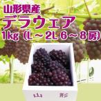 送料無料 山形県産 ぶどう デラウェア 1kg (6-8房入)2Lサイズ